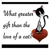 161665912_cute-funny-and-sweet-cat-quotes-for-cat-lovers-of-all-.jpg