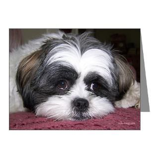 Animals Note Cards  Cute Shih Tzu Dog Note Cards (Pk of 10
