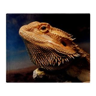 young bearded dragon. Stadium Blanket for $59.50