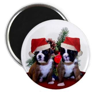 Christmas Boxer puppies  Ritmo Boxers Designs