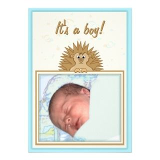 Cartoon Hedgehog Baby Boy Birth Announcement