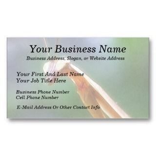 The Praying Mantis Business Card Template