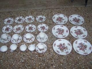 Vintage Johnson Brothers China Devon Sprays England