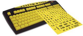 Typing Tutor Keyboard with Large Print Keyboard Sticker