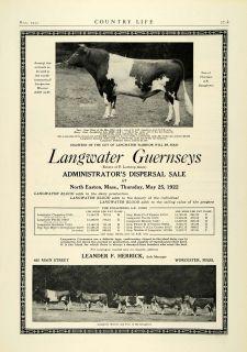 1922 Ad Leander F Herrick Langwater Gurnsey Dairy Cow Cattle Livestock