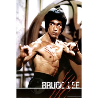 Bruce Lee Fight Movie Poster Scratch Way Enter Dragon
