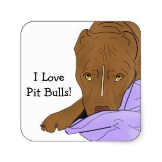 Love Pit Bulls! Cute Pit Bull in a Blanket Stickers
