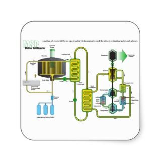 Diagram of a Molten Salt Nuclear Fission Reactor Sticker