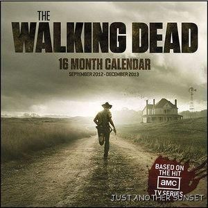 Walking Dead 2013 16 Month Calendar Zombie TV Show Apocalypse