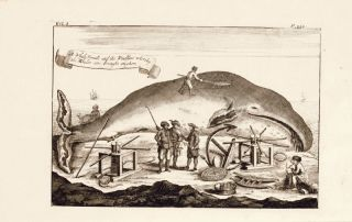 Antique Print Whale Fishing Whales Beach Greenland Monck 1744