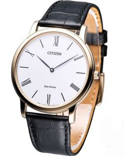 Citizen Eco Drive Stilleto Super Thin AR1113 12B Mens Watch