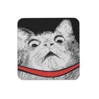 Surprised Cat Gasp Meme Set Of 6 Cork Coasters | Auto ...