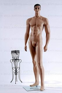 amt mannequins standing male mannequin model jim