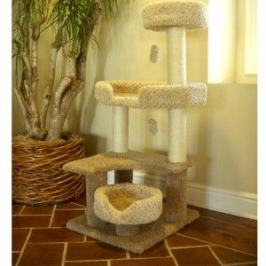 55 Cat Kitten Tree Jungle Gym Carpet with Scratching Posts and Toys