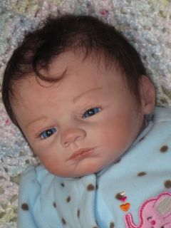 Reborn Baby Girl Doll Moby by Marissa May Now Tia