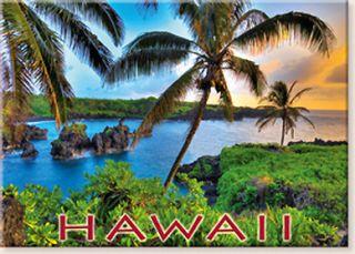 Vintage Hawaii Hawaiian Magnet Solid Coconut Hana Maui