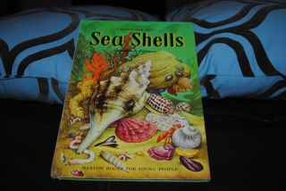 Maxton Book About Sea Shells Vintage 1954 Follett Publishing Chicago