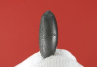 Geoff of Meteorite Men Sikhote Alin w 100 Rollover Lip