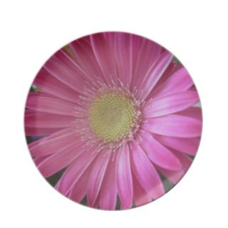 Pink Daisy Princess Party Plates