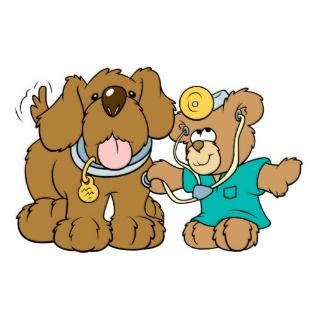 veterinarian vet teddy bear design photo cut outs