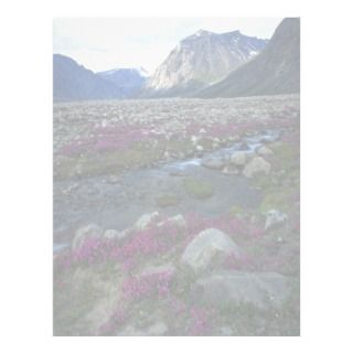 Broad leafed willow herb and stream, Baffin Island Custom Letterhead