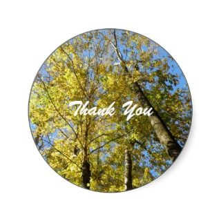 Fall Colored Tree Thank You Stickers