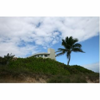 Beach House on Hill with sky and palm tree Photo Cut Outs