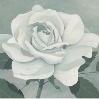 White Rose Print by Franz Heigl