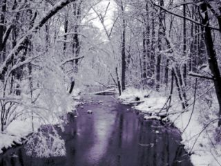 Snow Covered Trees along Creek in Winter Landscape Art on Acrylic by Jan Lakey