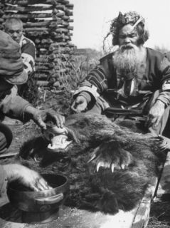Washing Mouth of Slain Bear is Part of Ainu Ritual of Worshipping New Bear God Premium Photographic Print by Alfred Eisenstaedt