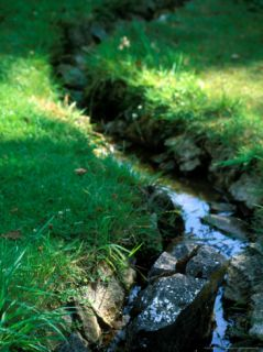 Large Garden with Water Feature and Stream, Mill House, Wiltshire Photographic Print by Lynn Keddie
