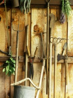 Garden Tools Hanging in Shed Fork, Shears, Rake, Lopper, Axe, Saw & Gardening Gloves Photographic Print by Martine Mouchy