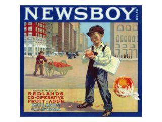 Redlands, California, Newsboy Brand Citrus Label Print