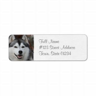 Husky Dog Return Address Label