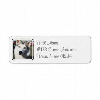 Siberian Husky Dog Mailing Label