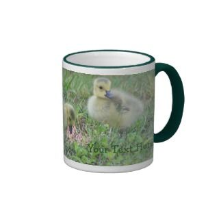 Canada Geese Babies Wildlife Photo Mug