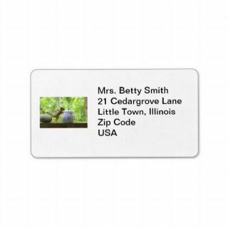 Squirrel and Cookie Jar Custom Address Label