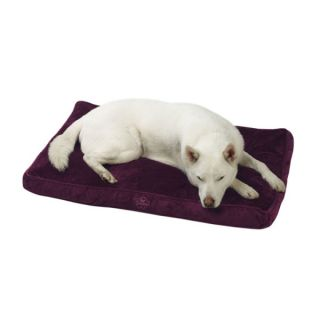 Pet Dreams Memory Foam Eco Friendly Orthopedic Dog Bed   Beds   Dog