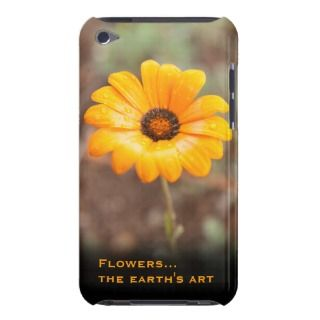 Orange Spring Flash African Daisy Close Up Photo iPod Touch Cases