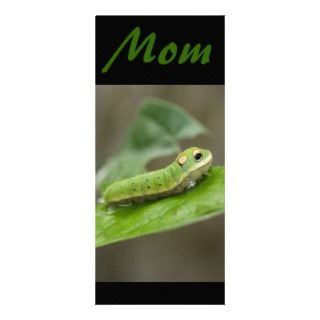 Butterfly Caterpillar Larva Customized Rack Card