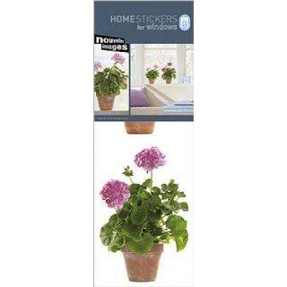 Blumen   Rosa Geranien Aufkleber Poster Sticker Für Fenster (69 x