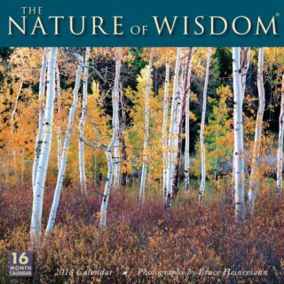 Nature of Wisdom    2013 12 Month Calendar Calendars