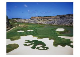 Sandy Lane Country Club Green Monkey, Hole 16 Photographic Print by J.D. Cuban