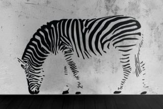 Zebra Wandtattoo Wandsticker 180 NEU