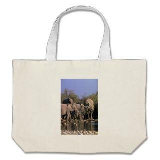 African Elephants   Breeding Herd At Water Bags
