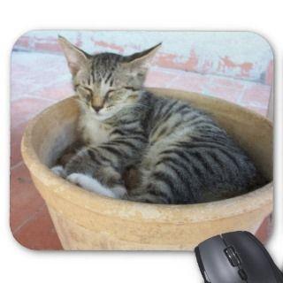 Mousepad/Mousemat Tabby Kitten Asleep N Flower Pot