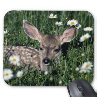 Mule Deer young fawn lying in green field of white Mouse Pads
