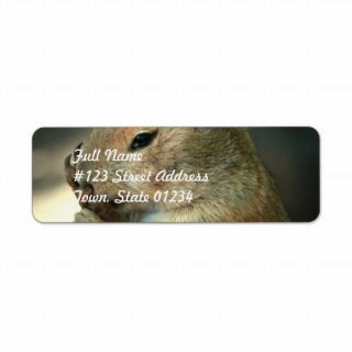 Prairie Dog Mailing Labels