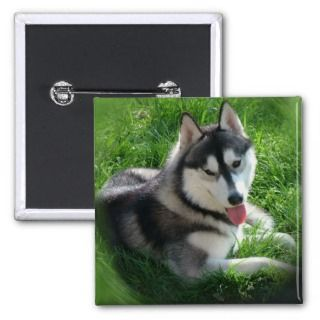 Siberian Husky Dog Square Pin