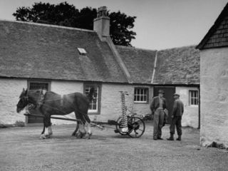 Men Standing Near Horse Drawn Farming Equipment Premium Photographic Print